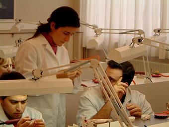 protesis removibles, protesis fijas, tecnicos dentales